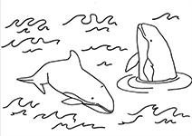 Kleurplaten Dierenarts.Kleurplaten Sos Dolfijn